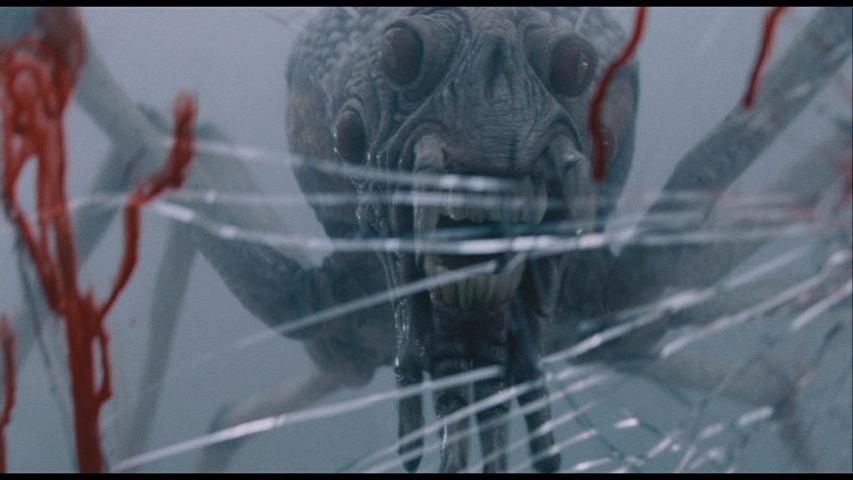 Spider_monster